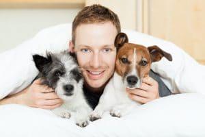 Hundekrankenversicherung für 2 Hunde