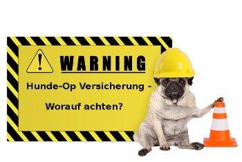 Hundeopversicherung checkliste