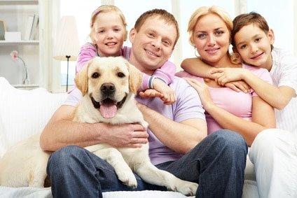 Hunde OP Versicherung Test