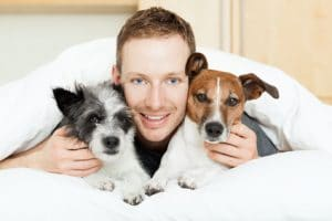 Hunde Op Versicherung für 2 Hunde